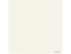 Megagres Моноколоры WHITE POL PJ6900