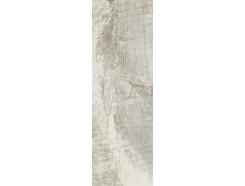 Trophy Bianco 20 x 60