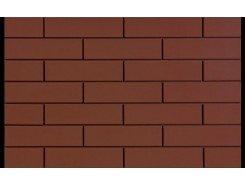 Burgund Plus Elewacja Стена