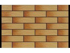 Gobi Elewacja Rustico Стена