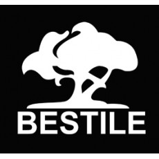 Bestile (Бестайл)